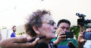 María Sierra Damián, diputada por Morena.