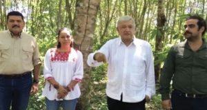 Dará-Obrador-5-mil-por-sembrar-árboles