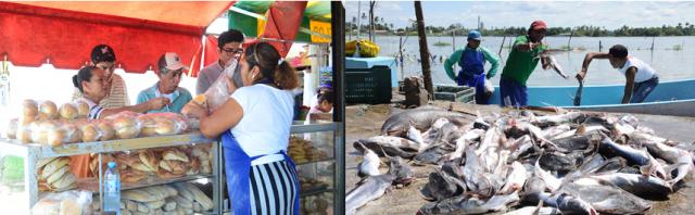 Repunta la industria panificadora y pesquera
