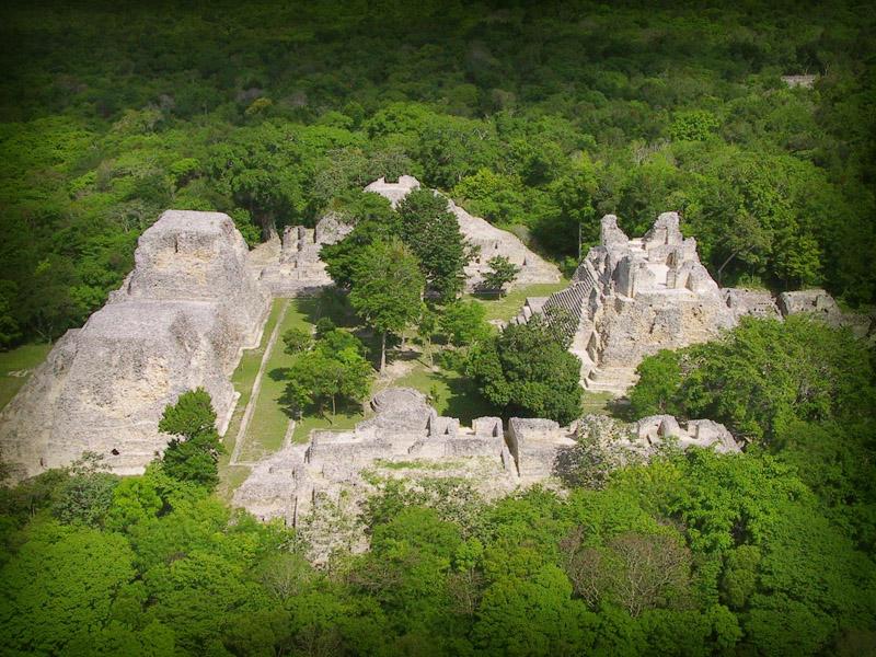 Campeche, con 4.5 millones de hectáreas forestales