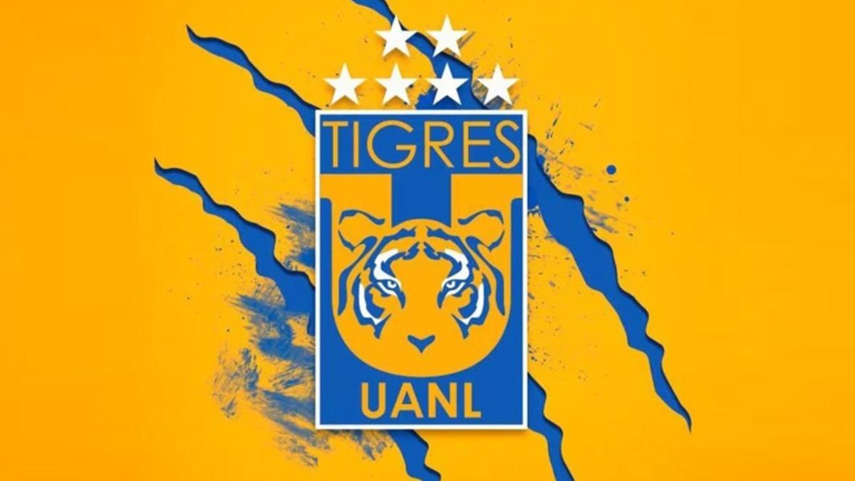 still03feb-tigres-01-135020