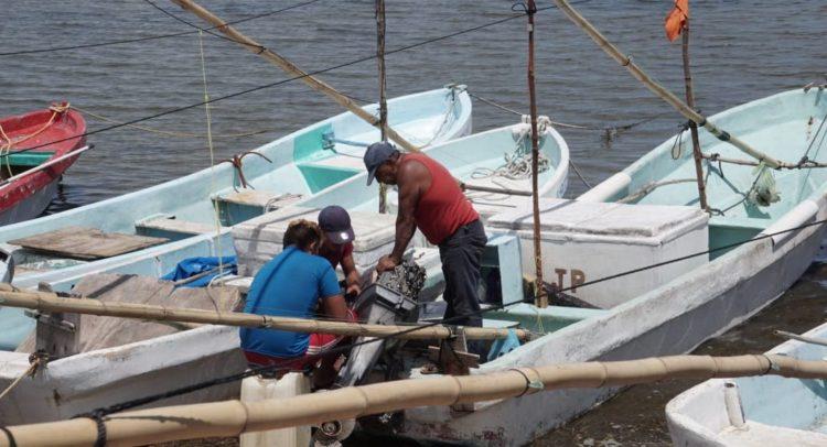 pescadorescampeche