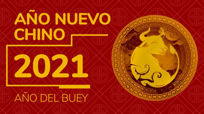 ano-nuevo-150046-800×450